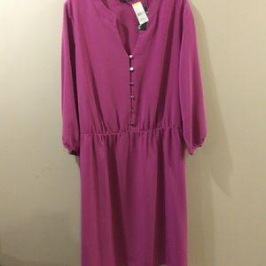 Covington Dresses - Women's Plus Size 3X Dress